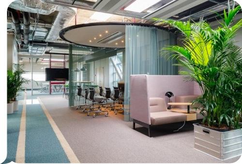 Luminor agile studio image